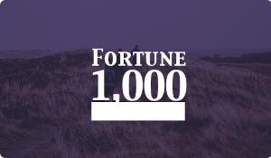 Fortune 100 Case Study